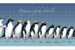 Penguin.poster