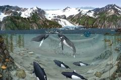 Kenai Fjords National Park Fjord Habitat Mural